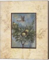 Giardino II Fine-Art Print