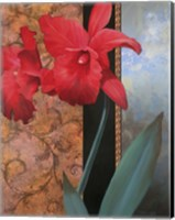 Lily Red/Teal Damasque Fine-Art Print