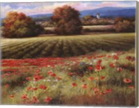 Fields of Provence II Fine-Art Print