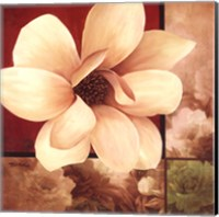 Magnolia Collage Fine-Art Print