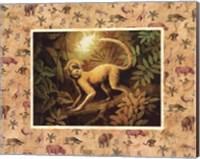 Safari - Monkey Fine-Art Print