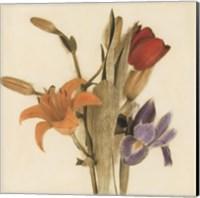 Tre Fiori III - Special Fine-Art Print
