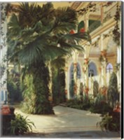 Interior of a Palm House Fine-Art Print