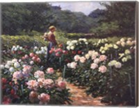 Woman in a Garden of Peonies Fine-Art Print