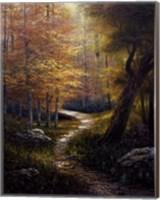 Aspen Beauty Fine-Art Print