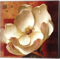 Magnolia Square I Fine-Art Print