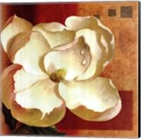 Magnolia Square II Fine-Art Print