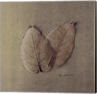 Pair Of Skelton Leaves Fine-Art Print
