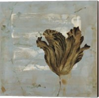 Tulip Dream I Fine-Art Print