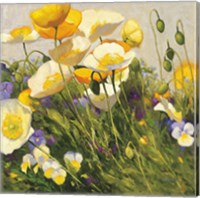 Poppies and Pansies I Fine-Art Print
