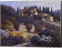 Tucked Away In Tuscany Fine-Art Print