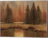 Meadow Pines Fine-Art Print