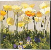 Poppies and Pansies II Fine-Art Print