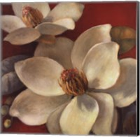 Magnolia Passion I Fine-Art Print