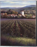 The Vineyard Fine-Art Print