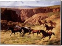 Canyon Mustangs Fine-Art Print