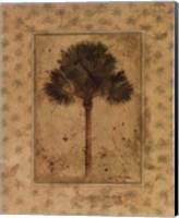 Elegant Palm Fine-Art Print