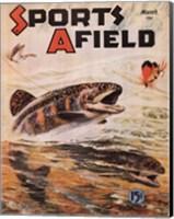 Sports Afield Fine-Art Print