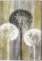 Rustic Garden II Fine-Art Print