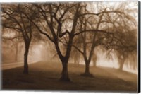 Misty Park Fine-Art Print