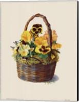 Sunshine Pansy Basket Fine-Art Print