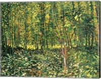 Trees and Undergrowth, 1887 Fine-Art Print