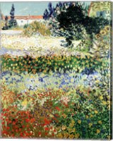 Garden in Bloom, Arles, 1888 Fine-Art Print