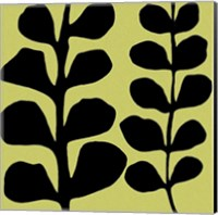 Black Fern on Green Fine-Art Print
