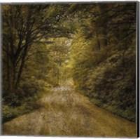 Flannery Fork Road No. 1 Fine-Art Print