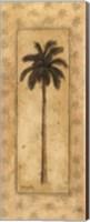 Regal Palm Fine-Art Print