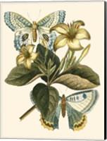 Butterfly Oasis IV Fine-Art Print