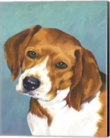 Dog Portrait-Beagle Fine-Art Print