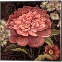 Maribel II Fine-Art Print