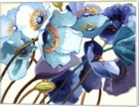 Le Pavots Bleu Fine-Art Print