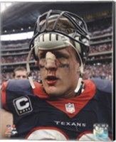 J.J. Watt 2013 Action Fine-Art Print