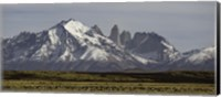 Field with snowcapped mountains, Paine Massif, Torres del Paine National Park, Magallanes Region, Patagonia, Chile Fine-Art Print
