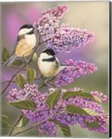 Lilacs and Chickadees Fine-Art Print