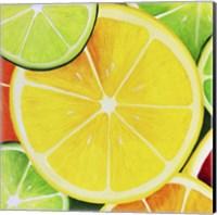 Sliced Lemon Fine-Art Print