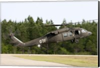 US Army UH-60L Blackhawk helicopter landing at Florida Airport Fine-Art Print