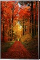 Forest Garden Fine-Art Print
