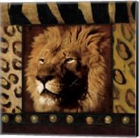 Lion with Wild Border Fine-Art Print