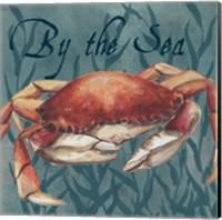 Nautical Critters III Fine-Art Print