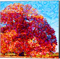 Buddha Tree Fine-Art Print