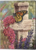 Butterfly and Fence Cross Fine-Art Print