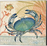 Oceana II Fine-Art Print