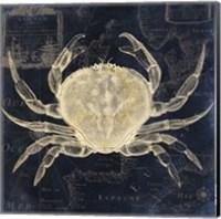 Maritime Blues III Fine-Art Print