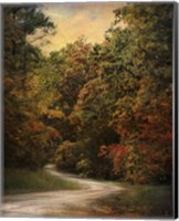 Autumn Forest 1 Fine-Art Print