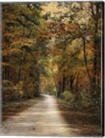 Autumn Forest 3 Fine-Art Print