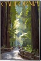 California 1 Fine-Art Print