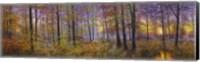 Autumn Wolves Fine-Art Print